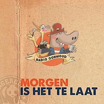 Morgen Is Het Te Laat (feat. Hannelore Bedert)