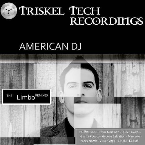 American DJ