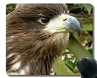 カスタマイズされたマウスパッド、Skying Eagles Officeマウスパッド