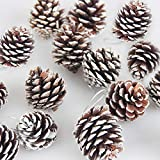 Top 10 Natural Christmas Ornaments