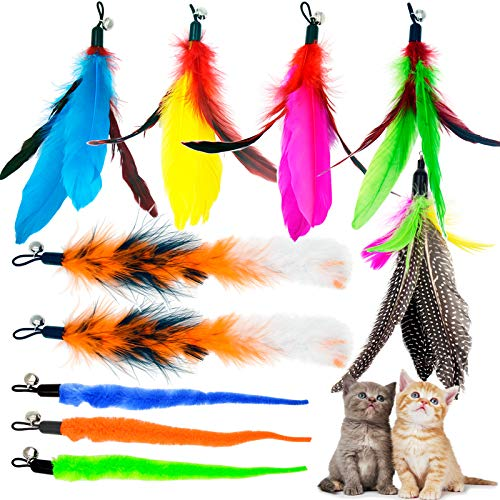 TIENAILING 10 Pieces Cat Feather Toys Natural Bird Feather Refill Worm Replacement Refill Cat Wand Toy Teaser Refills, Interactive Teaser Toy for Cats