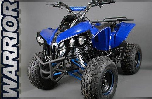 XXL 125cc Quad Warrior | Kinderquad Kinderfahrzeug Atv Midi (Grün)