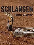 Schlangen - Besser als ihr Ruf