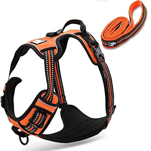 OLizee Reflective Nylon No-Pull Dog Harness and Training Leash Set Padded Durable Adjustable(M, Orange Set)