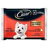 Cesar Multipack de Comida Húmeda para Perro en Salsa, Selección Carnes Mixtas (Pack de 13 x 4 bolsitas x 100g)