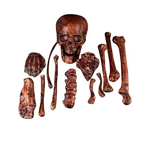Fine Halloween Skeleton, Halloween Props Party Decoration Human Skull Skeleton Anatomical Accessories for Best Halloween Decoration (Red)