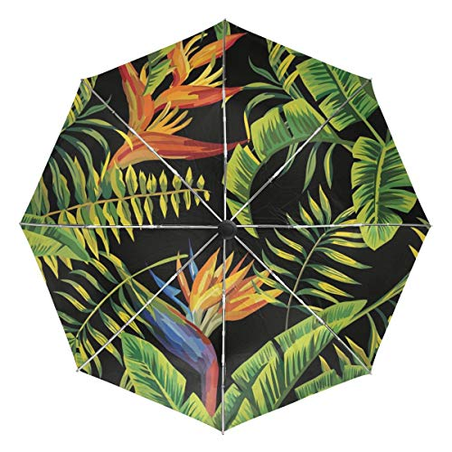 Tropische Palme Bananenblatt und Pflanzen Winddichte Regenschirme Auto Open Close Stark Langlebig Kompakt Reiseschirm UV-Schutz Tragbar Leicht Leicht Leicht zu tragen