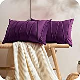 Topfinel 2 Juegos Hogar Cojines Terciopelo Suave Decorativa Almohadas Fundas de Color Sólido para Sala de Estar sofás 40x60cm Violeta Oscuro