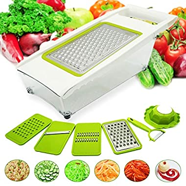 EEGO 8-in-1 Mandoline Slicer Fruit Vegetable Cheese Grater Cutter Julienne Slicer, 4 Interchangeable Stainless Steel Blades + Garlic Mincer + Transparent Food Container + Safety Hand Holder + Peeler
