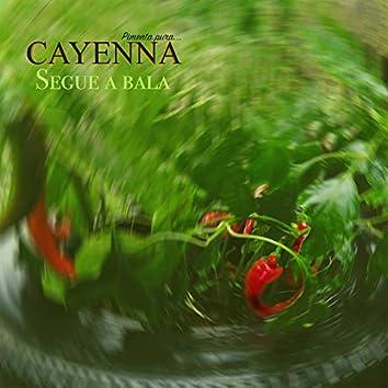 Cayenna 01 - Segue a Bala (Titas Casanova Remix)