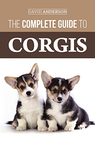 The Complete Guide to Corgis: Everything to know about both the Pembroke Welsh and Cardigan Welsh Corgi dog breeds (English Edition)