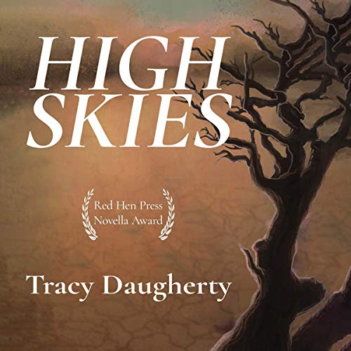 High Skies  By  cover art