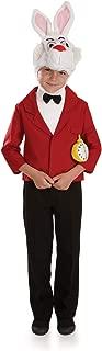 Boys Wonderland Costumes Kids Hatter & White Rabbit Childrens Outfits