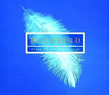 Bluebird - Music Of Contemplation