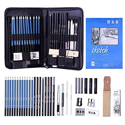 BEADY デッサン鉛筆 41点セット スケッチ用 鉛筆セット 子供や大人も適用な絵具 初心者向けの鉛筆 デッサンツール