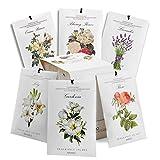 MYARO 12 Packs Scented Sachets for Drawer and Closet, Long-Lasting Sachets Bags Home Fragrance Sachet 6 Scents Option- Lavender, Rose, Jasmine, Ocean, Gardenia, Lily
