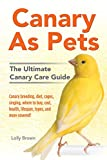 Canary As Pets: Canary breeding, diet, cages, singing, where to buy,...