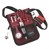 AsaTechmed Nurse Pro Pack Pocket Organizer Pouch Hip Bag Medical Organizer Belt | Utility Medical Gear Kit | Antimicrobial, HHA, EMT, CNA, NP, PA, Student, Nurse Kit - TOOLS INCLUDED (Maroon)