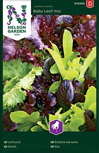 Salat Samen Mix Baby Leaf - Nelson Garden Gemüse Saatgut - Pflücksalat Samen (1120 Stück) (Einzelpackung)