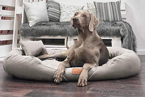 tierlando® Orthopädisches Hundebett Tiffany Couture   Große Hunde XL XXL   Elegant   Waschbar Memory Foam   Meliertes Hundesofa XL   Creme