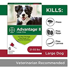 New packaging, same formula: Contains 6 one month applications of Bayer Advantage II topical flea prevention and treatment for large dogs 21 to 55 pounds Advantage II works through contact, so fleas don't have to bite your dog to die Effective flea t...