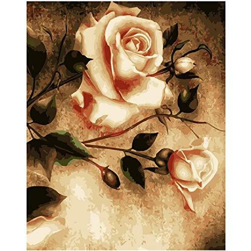Kpoiuy Vintage Bloom Rose Flower DIY Malerei Nach Zahlen Wandkunst Bild Acrylmalerei FüR Die Inneneinrichtung 40 * 50CM Kein Bilderrahmen