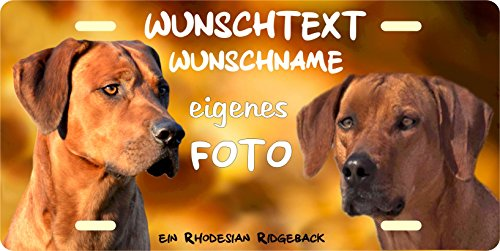 Hundeschild Metallschild Türschild Blechschild Warnschild mit eigenem Foto Bild und Wunschtext Größe 305x152mm für innen und außen