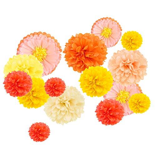 SUNBEAUTY 15er Set Papier Pompoms Orange Gelb Apricot Seidenpapier Blumen Party Geburtstag Feier Dekoration