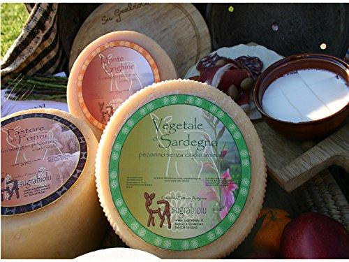 3.5 kg - Vegetale di Sardegna. Pecorino per vegetariani. Formaggio di pecora sardo con caglio vegetale. Ideale per chi segue una dieta vegetariana. Realizzato a Siamanna (Sardegna), da Giovanni Busia,