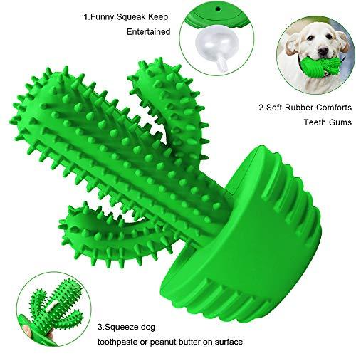 Pamlulu Dog Toothbrush Chew Toy