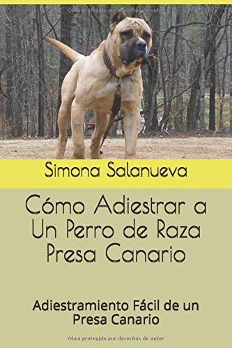 Cómo Adiestrar a Un Perro de Raza Presa Canario: Adiestramiento Fácil de...
