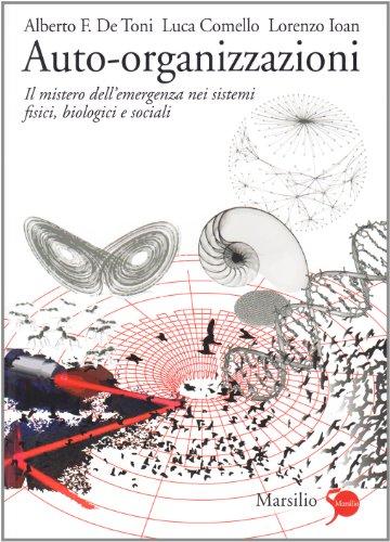 Auto-organizzazioni. Il mistero dell'emergenza dal basso nei sistemi fisici, biologici e sociali
