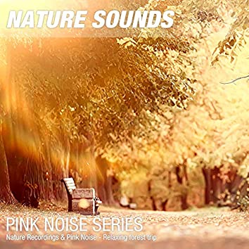 Nature Recordings & Pink Noise - Relaxing forest trip