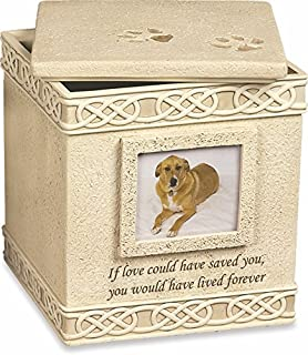 MMP Living Pet Urn Memorial If Love Could Have Saved You. - Top Opening
