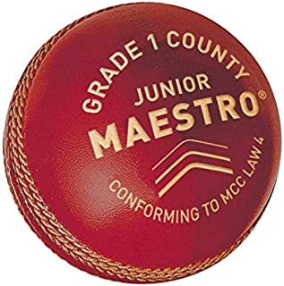 GM 儿童 Maestro 1年级县板球