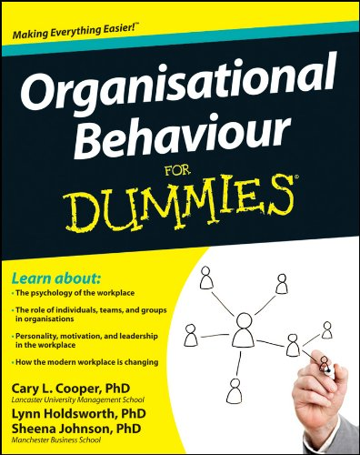Organisational Behaviour For Dummies (English Edition)
