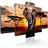 murando Cuadro en Lienzo Africa Elefante 200x100 cm Impresión de 5 Piezas Material Tejido no Tejido Impresión Artística Imagen Gráfica Decoracion de Pared Paisaje Naturaleza g-C-0054-b-n