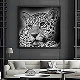 Arte de animales en blanco y negro, pintura en lienzo, póster moderno, León, leopardo, elefante, vaca, ciervo, cuadro de pared para decoración de la habitación del hogar, 70x70 cm sin marco