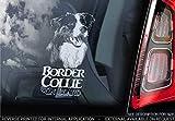 Sticker International Border-Collie - Autoaufkleber - Hund Schild Fenster, Stoßstange Aufkleber Geschenk - V007 - Weiß/Klar - Externe Außen Aufdruck, 200x100mm