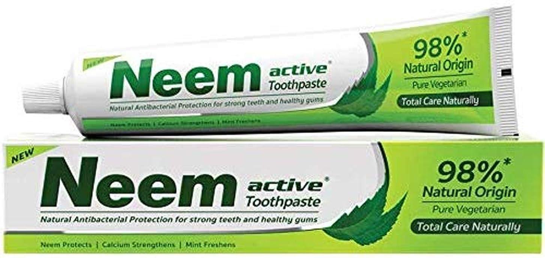 惑星応用幸運なニーム(Neem) 歯磨き粉 200g