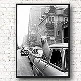 HYLLL Vintage Lama in einem Taxi auf dem Times Square New