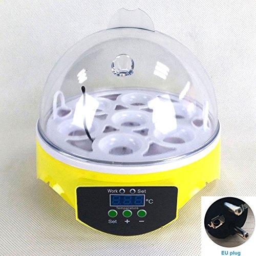 hehsd0 Eierinkubator,Automatisch Rotierender Mini 7-Ei-Transparenter Temperaturinkubator Mit Temperaturregelung FüR Huhn,Ente,Vogel,GeflüGel Allgemeiner Inkubator