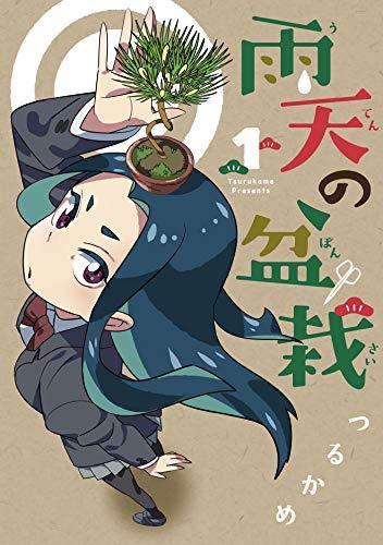 『雨天の盆栽』