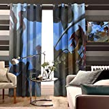 TXEWA Curtains for Kids' Room Action-Adventure Game Screenshot Adventure Game Animation Pc Game