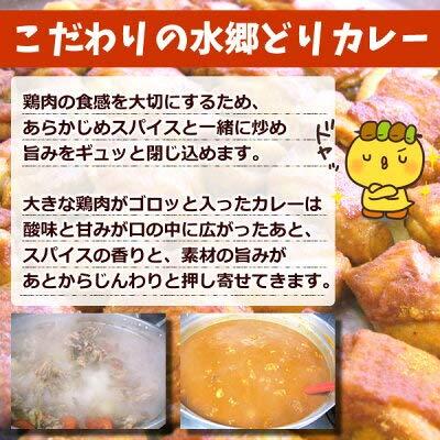 水郷のとりやさん『水郷鶏カレー2食セット』