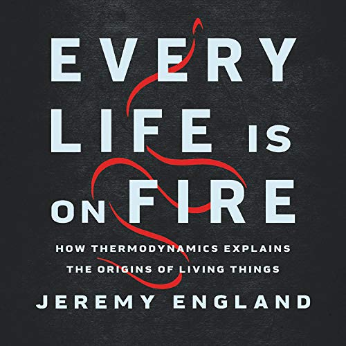 Couverture de Every Life Is on Fire