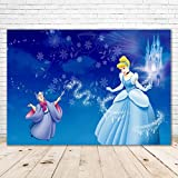 Princess Cinderella Backdrop for Birthday Party 7x5 Baby Blue Background Silver Castle Cinderella Baby Shower Background for Girl Happy Birthday Backdrops Cinderella Themed Party Banner