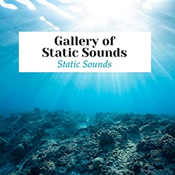 Gallery of Static Sounds