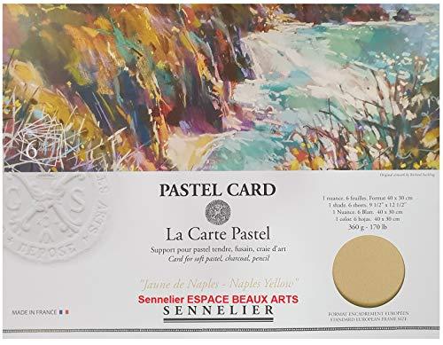 Sennelier Pastel sec Card (papel de lija de grano fino) bolsillo 30x40cm 6 hojas (Amarillo Nápoles - AMARILLO NAPOLES) 360gs