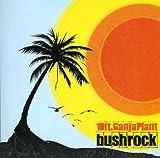 Songtexte von 10 Ft. Ganja Plant - Bush Rock